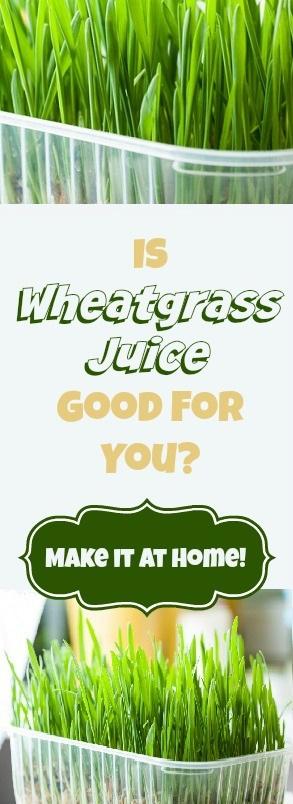 Is Wheatgrass Juice Good?